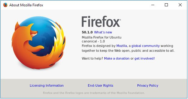 firefox-docker-about